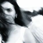 Engel sw 1
